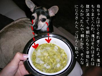 eating4.jpg