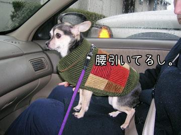 hisashiburi10.jpg