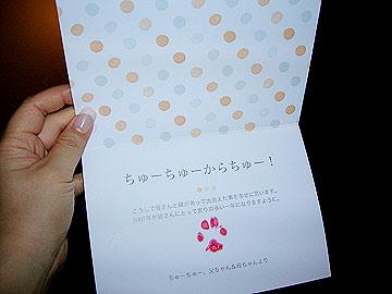hisashiburi4.jpg
