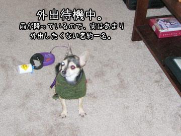 hisashiburi5.jpg