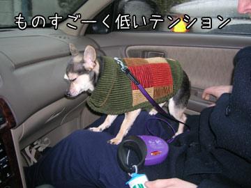 hisashiburi9.jpg