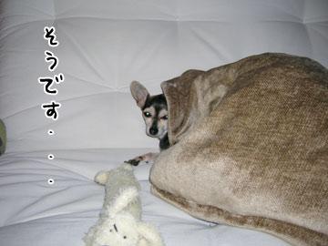omocha7.jpg