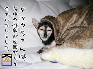 omocha8.jpg
