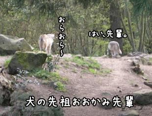 oregonzoo1.jpg
