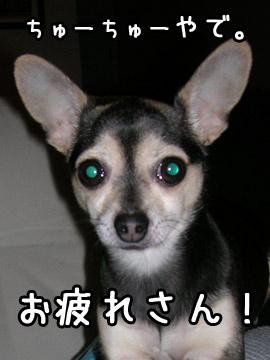 otsukare1.jpg