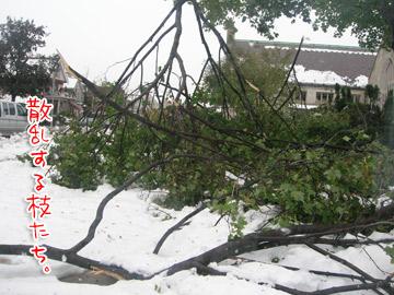 snowstorm11.jpg