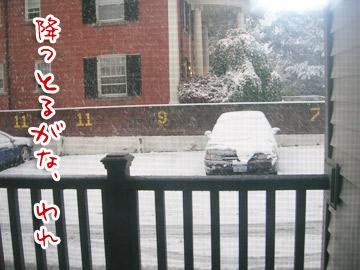 snowstorm2.jpg