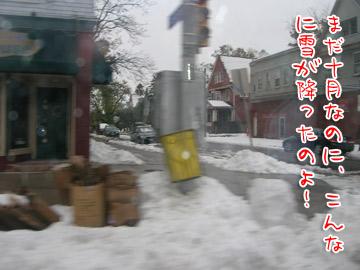 snowstorm8.jpg