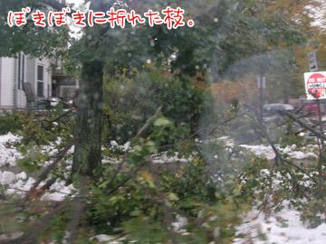 snowstorm9.jpg