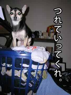 syokuji5.jpg