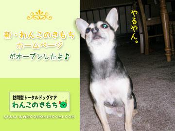wanconokimochi2.jpg