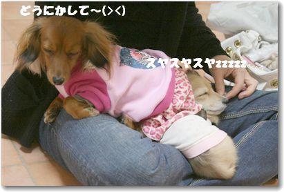 kissD_6087-1.jpg