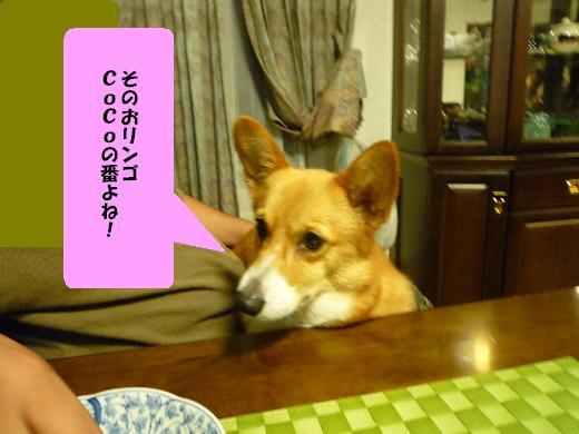 7 CoCoの番