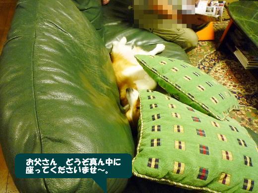 3_20110107141143.jpg