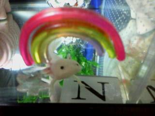 2つの虹2