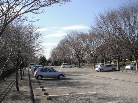 110319-06parking.jpg