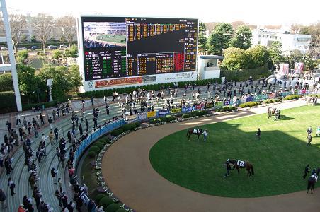 101211-07nakayama race course