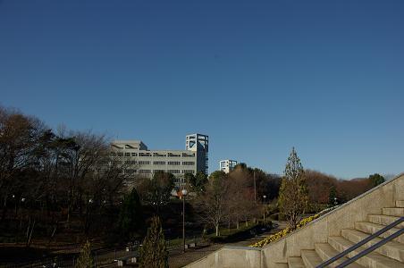 101223-02jyoshibi view
