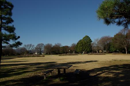 101223-13sagamihara park view