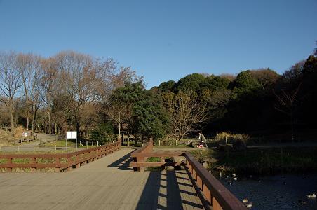 101225-02izuminomori view