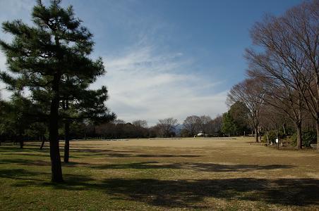 101231s-08agamihara park view