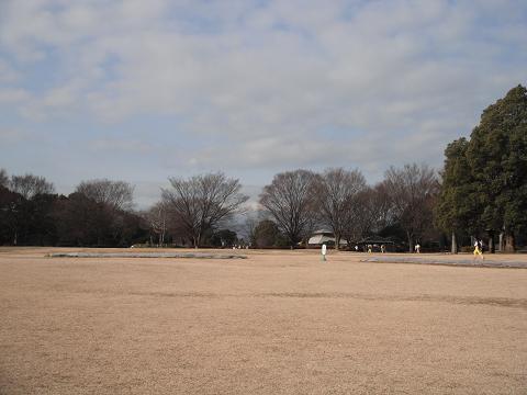 110129-04shibafu hiroba