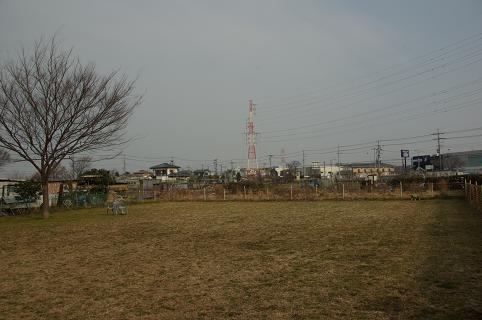 110206-01hirukawa view