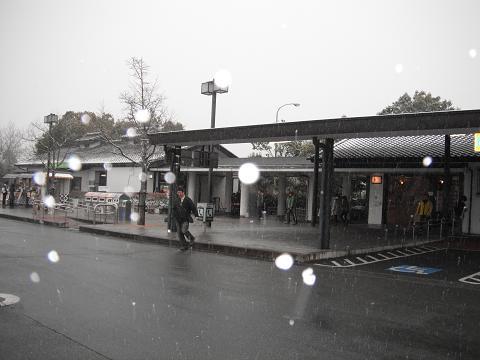 110211-01kanra PA甘楽