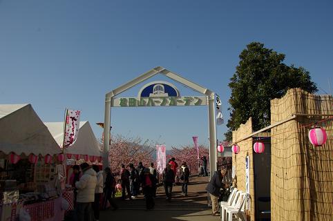 110226-18matsudayama herb garden view