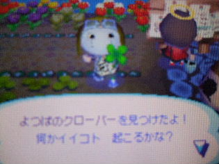 2007_1107ブログさぼって1230040