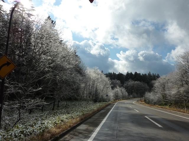 119樹氷jpg