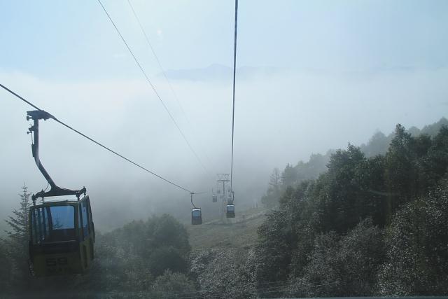 DPP0 668 271 霧の中0443