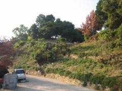 珠城古墳群1