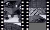 『大怪獣ガメラ』オープニング風(大映スコープタイプ)