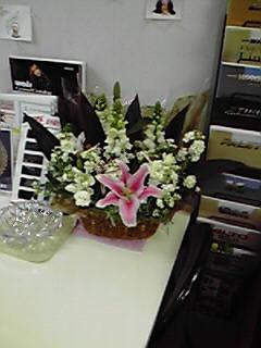 誕生日の花2008