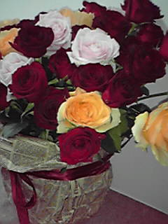 誕生日のバラ2008