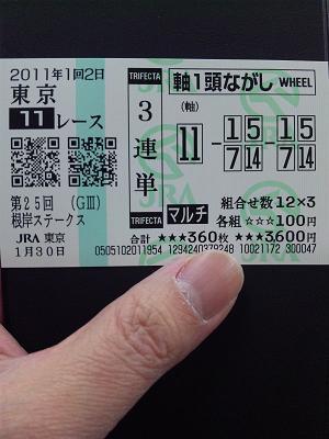 110130_154832東京競馬