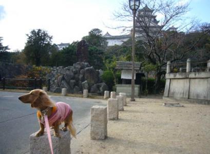 姫路城とティアラ