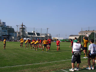 line-out.jpg