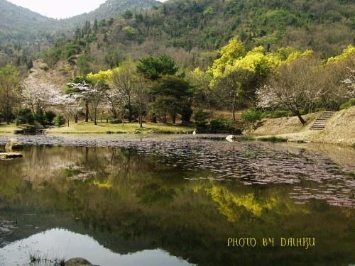 yama1_20080309020525.jpg