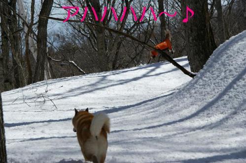 春うららの雪遊び10