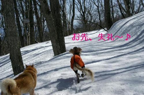 春うららの雪遊び7