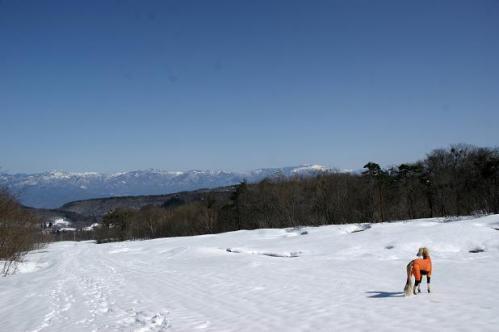 春うららの雪遊び19