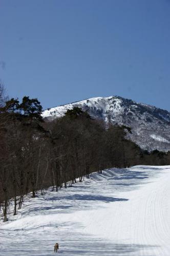 春うららの雪遊び2
