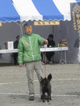 ブログ リラ133展覧会068