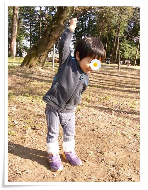 110406sakura6.jpg