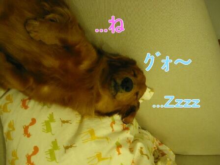20080302_001511524.jpg