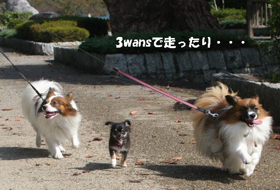 3wans091018-1.jpg