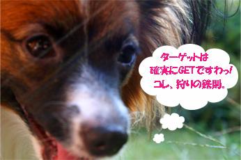 yuzu061027-2_20091001104004.jpg