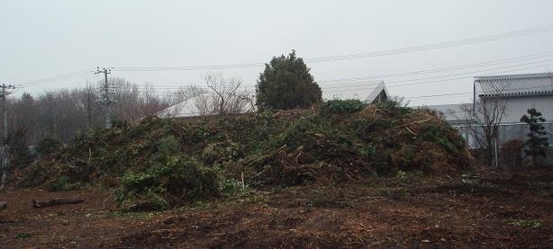 剪定枝の山1